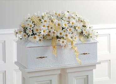 Daisy Casket Flower Spray