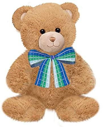 "10"" Dean Teddy Bear"