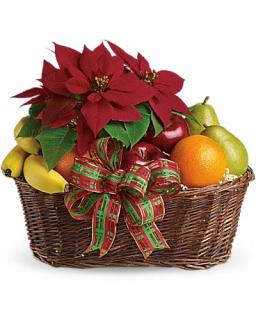 Fruit and Poinsettia